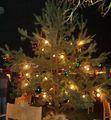 rangsdorfer_weihnachtsmarkt_2009_21_20091216_1910127855